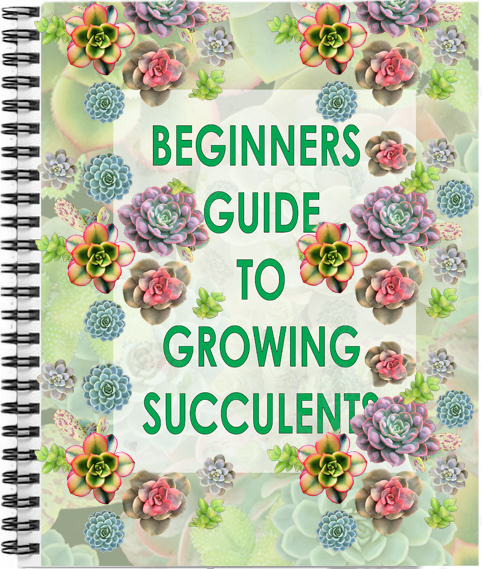 Free beginners guide to growing succulents.